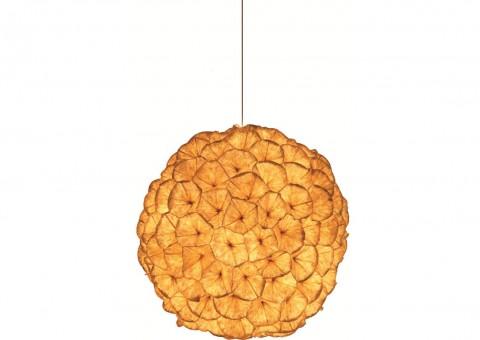 poppy ceiling pendant