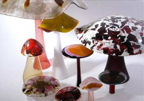 shrooms handmade glass art series by orfeo quagliata